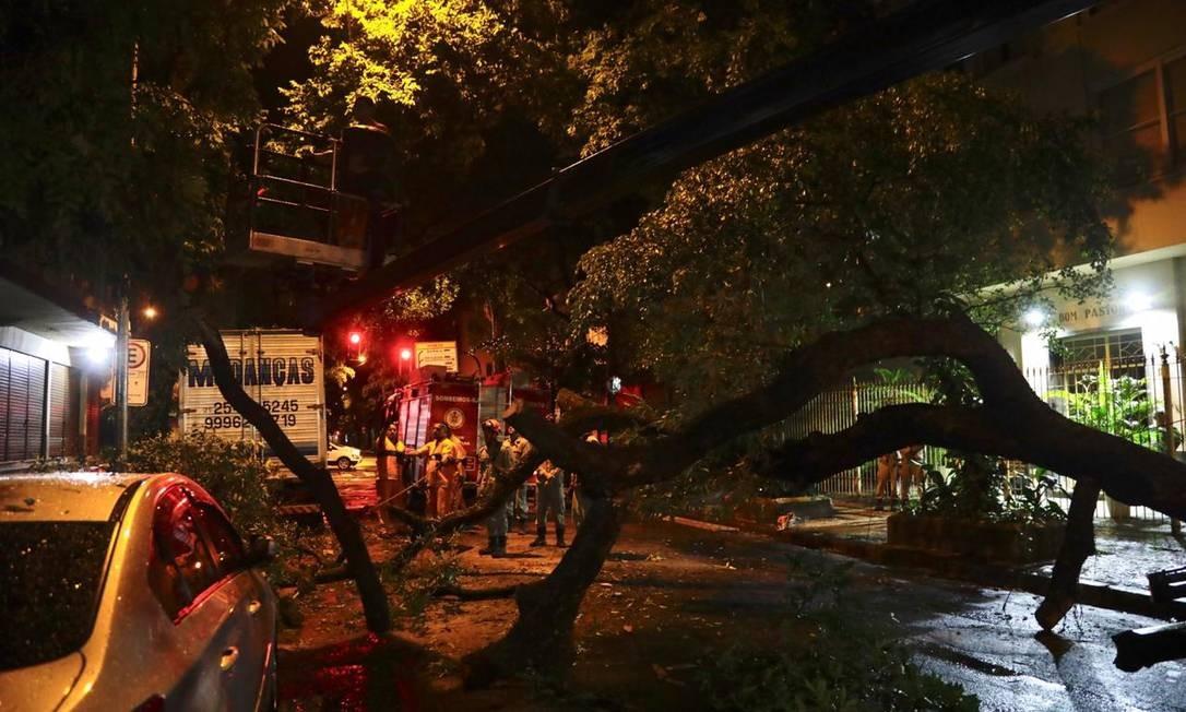 Na Rua Constante Ramos, em Copacabana, uma árvore caiu na altura da Barata Ribeiro Foto: Gabriel Monteiro/Agência O Globo