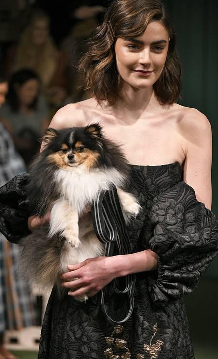 Esqueça as modelos humanas. No desfile da marca Lela Rose na semana de moda de Nova York as estrelas mesmo foram os fofíssimos cachorrinhos que entraram na passarela Foto: Victor VIRGILE / Gamma-Rapho via Getty Images