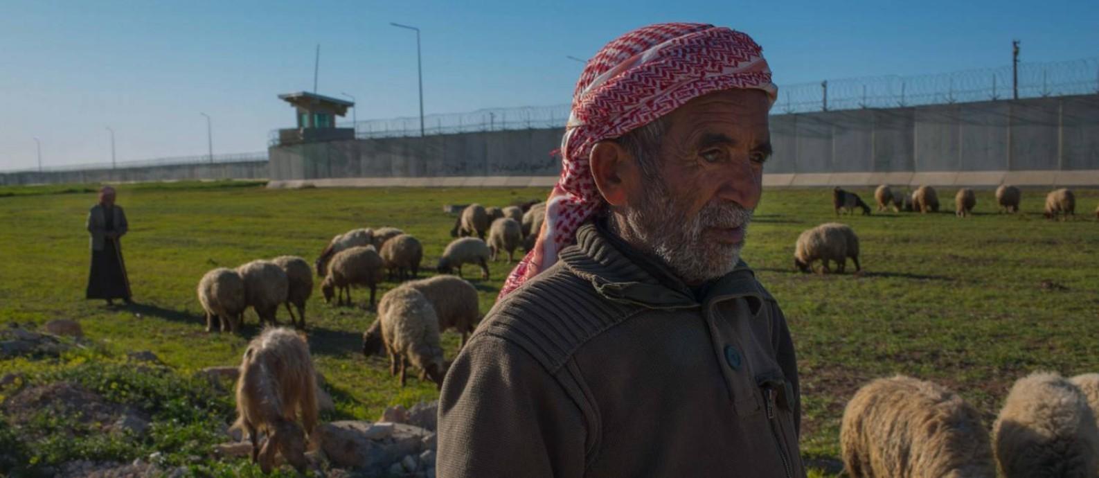 Pastores curdos levam ovelhas para pastar na beira do muro que separa a Turquia da Síria. Das torres de observação, soldados armados acompanham a movimentação dos curdos