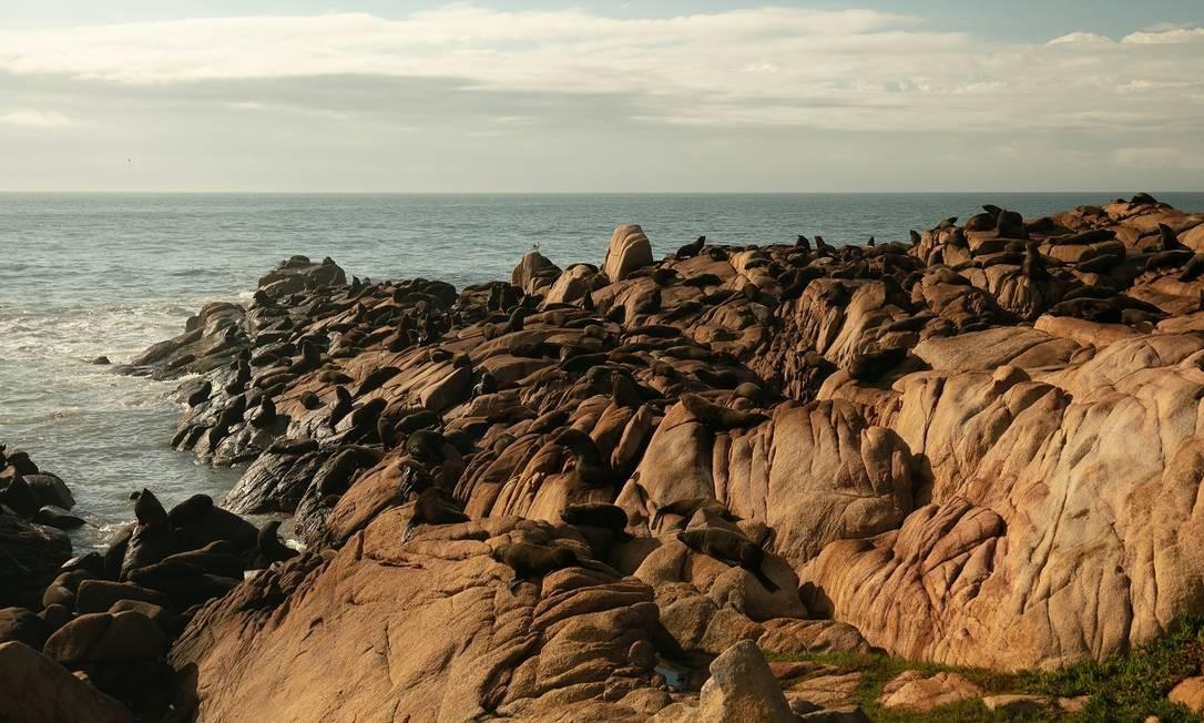 Cabo Polonio, a última cidade do litoral Uruguaio, está dentro de um preservado parque nacional, santuário de leões-marinhos Foto: Tali Kimelman / The New York Times