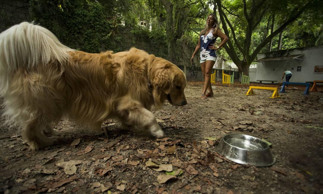 Sônia Bernardo, também voluntária, e Calvin são habitués do ParCão da Freguesia Foto: Guito Moreto / Agência O Globo