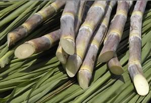 Recente ampliação dos subsídios indianos tem causado impactos significativos no mercado mundial de açúcar Foto: Arquivo