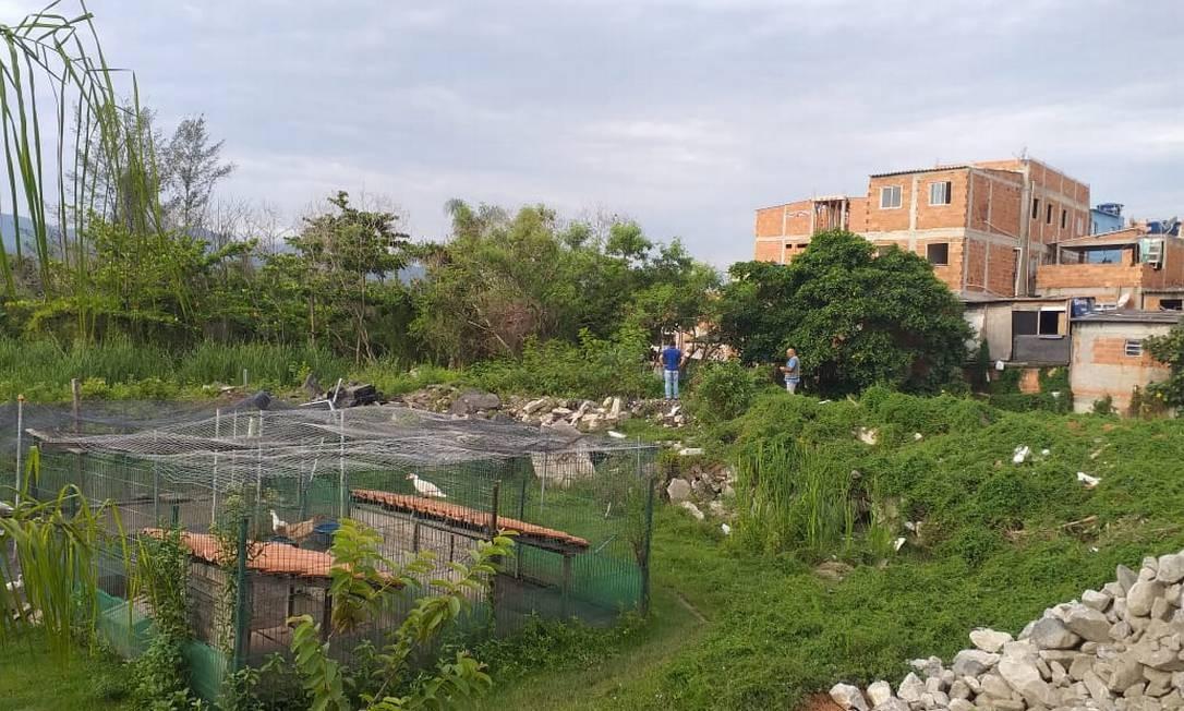 Condomínio de luxo é autuado após drenar área próxima da Lagoa de Marapendi Foto: Divulgação