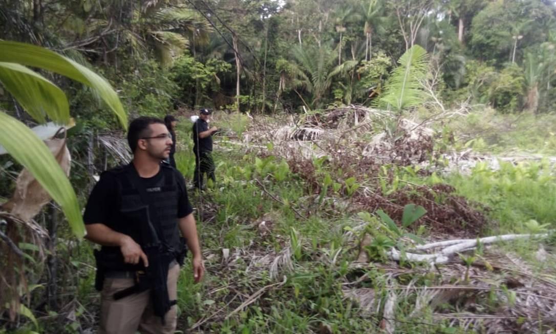O delegado Leonardo Brito, titular da Delegacia do Meio Ambiente do Amapá (Dema) Foto: Divulgação