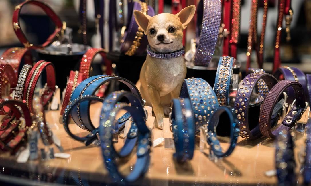 Um cão senta-se entre coleiras enfeitadas com joias expostas para venda Foto: OLI SCARFF / AFP