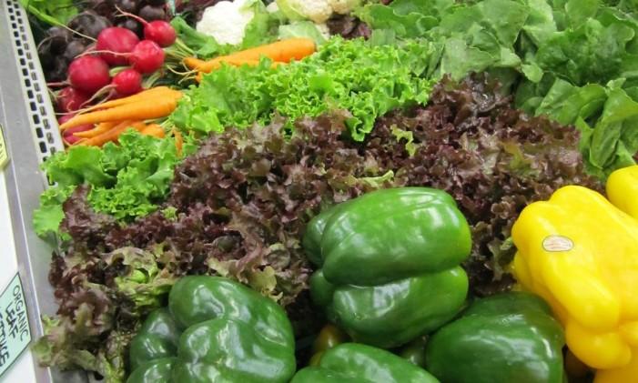 Prefira alimentos da estação e cuidados com quantidade para evitar desperdício Foto: Pixabay