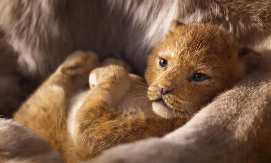 Outro que estreia em breve é 'O Rei Leão', dirigido por Jon Favreau: filme impressiona pelo hiperrealismo das cenas divulgadas Foto: Divulgação