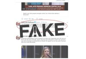 Print mostra tuíte #FAKE da deputada federal Gleisi Hoffmann Foto: Reprodução/WhatsApp