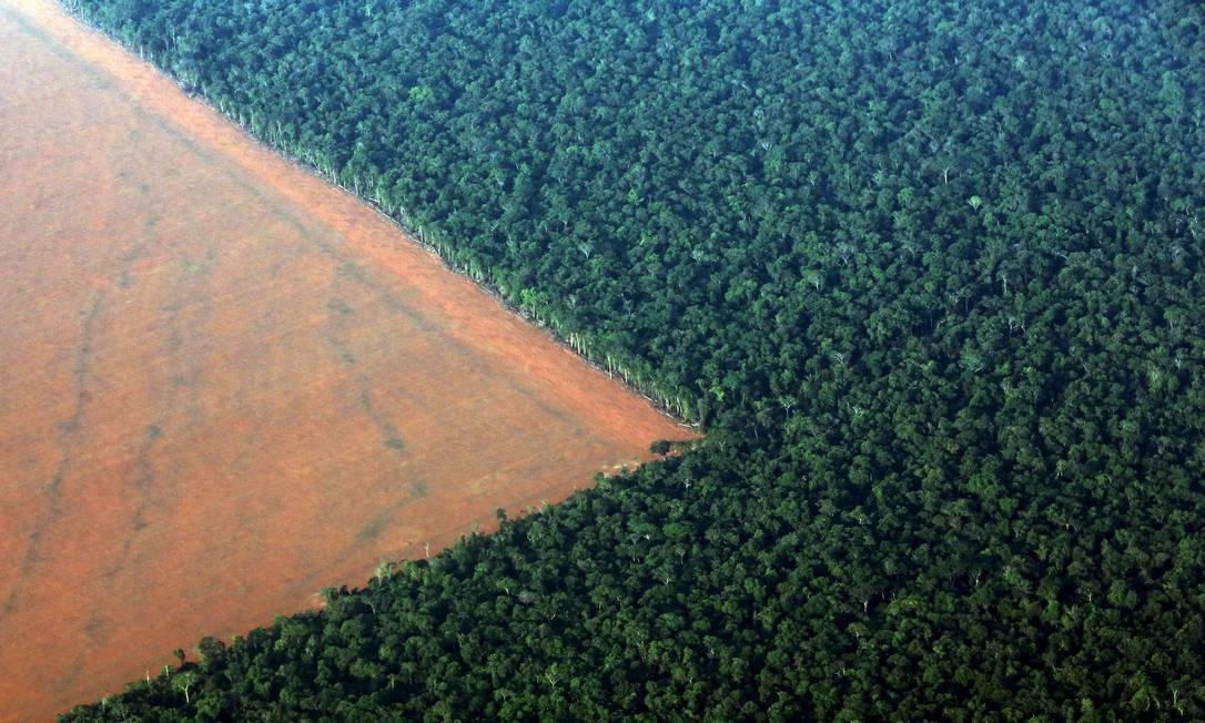 Desmatamento para cultivo de soja no Mato Grosso: arco formado entre o estado, Pará e Amazonas é a região com maior perda de árvores de fevereiro de 2019 Foto: PAULO WHITAKER / Reuters/12-1-2018