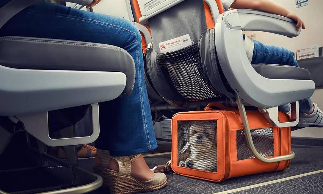 Viagens longas de avião podem contribuir para a formação de coágulos Foto: Divulgação
