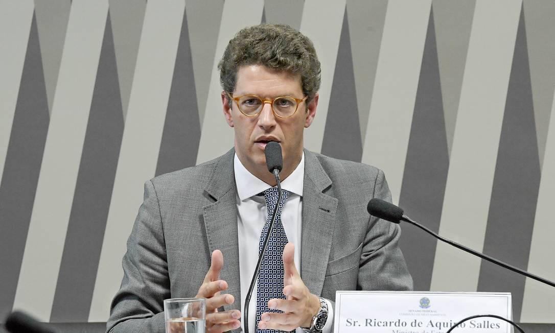 O ministro do Meio Ambiente, Ricardo Salles, durante audiência no Senado Foto: Roque de Sá/Agência Senado