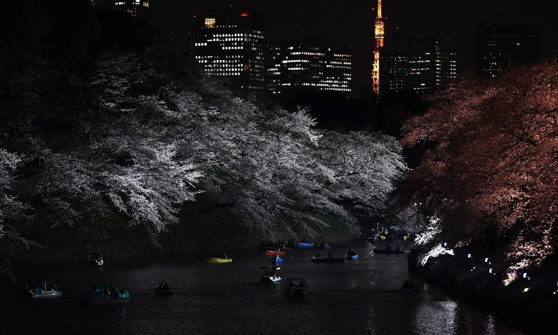 Pessoas passeiam em barcos a remo entre flores de cerejeira na capital japonesa, Tóquio Foto: CHARLY TRIBALLEAU / AFP