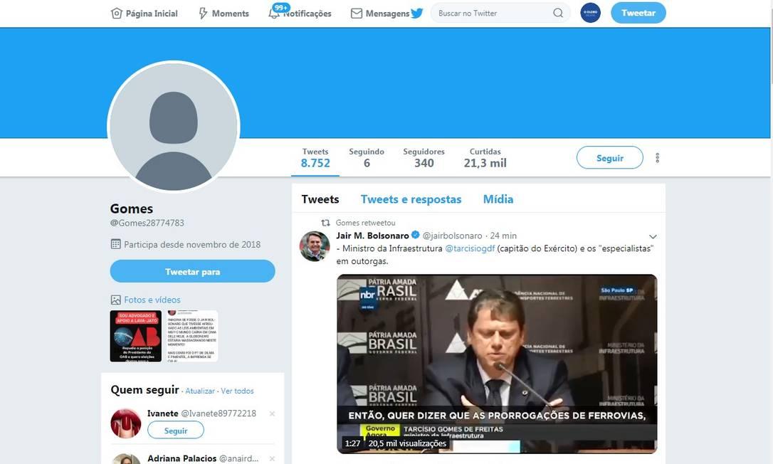 Atuação do perfil @gomes28774783 se restringe quase exclusivamente à defesa de assuntos de interesse do governo. Foto: Reprodução