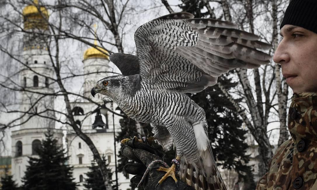 Um falcoeiro do serviço ornitológico do Kremlin – uma unidade especial criada em 1984 e supervisionada pelo Serviço de Guarda Federal – mantém Alpha, um açor fêmea de 20 anos, em seu punho enquanto patrulha o Kremlin em Moscou Foto: ALEXANDER NEMENOV / AFP