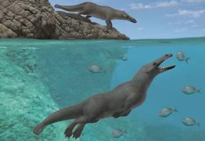 Ilustração mostra como seria o Peregocetus pacificus, ancestral das baleias que tinha quatro patas e capacidade de se locomover em terra e no mar Foto: Reprodução