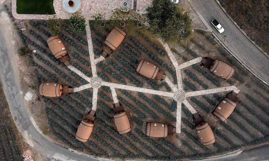Vista aérea mostra que os quartos ficam no meio de uma plantação de agave, a planta usada na fabricação da bebida nacional mexicana Foto: ULISES RUIZ / AFP