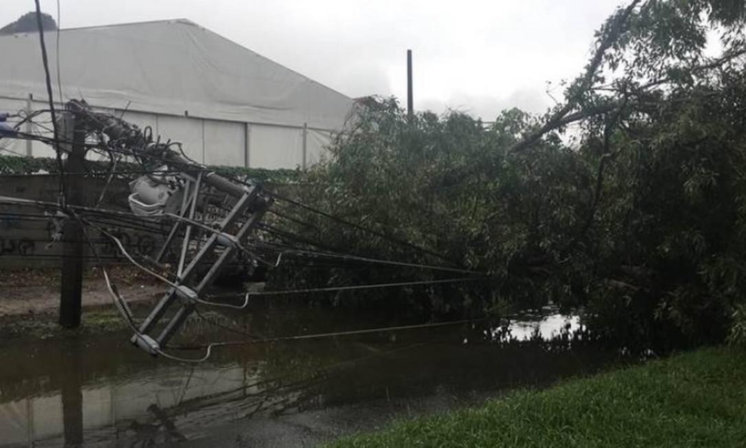 Várias árvores caíram sobre a rede elétrica em vários pontos da Grajaú-Jacarepaguá, provocando a interrupção do fornecimento de energia Foto: Divulgação/Light