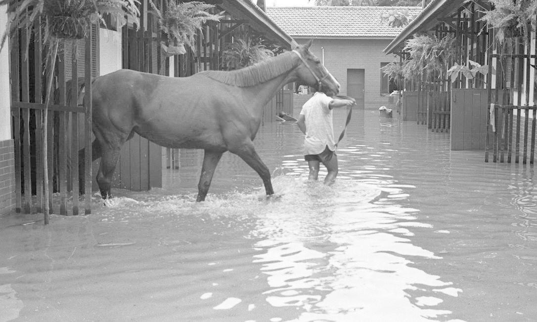Em 2 de março de 1985, cavalariço retira um cavalo do Hipódromo da Gávea. Jockey Club ficou completamente inundado Foto: Fernando Rodrigues / Agência O Globo