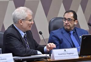 CPI de Brumadinho ouve o ex-diretor de ferrosos e carvão da Vale. Gerd Poppinga Foto: Geraldo Magela / Agência Senado