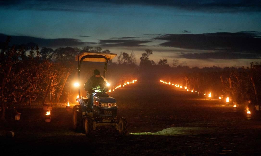Trabalhador dirige trator entre velas que iluminam um pomar de maçã fora da aldeia de Miloslavov-Alzbetin Dvor, perto de Bratislava, na Eslováquia. As mais de mil velas acesas servem para aproteger as flores de maçã das baixas temperaturas da noite gelada, aquecendo o ar no pomar de 120 hectares Foto: JOE KLAMAR / AFP