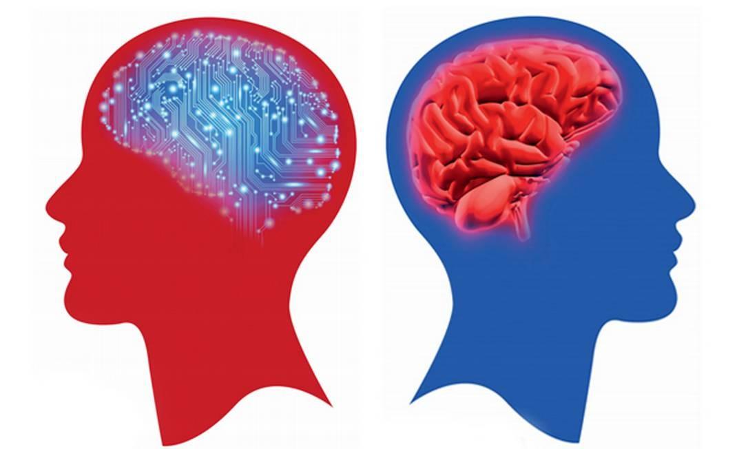 Afinal, como fica o cérebro de quem passa o dia ingerindo informações curtas em ritmo frenético? Foto: Editoria de arte O Globo
