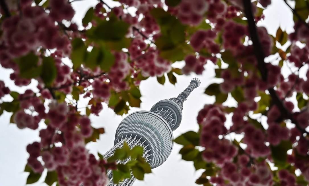 O Tokyo Skytree emoldurado entre flores, em Tóquio Foto: CHARLY TRIBALLEAU / AFP