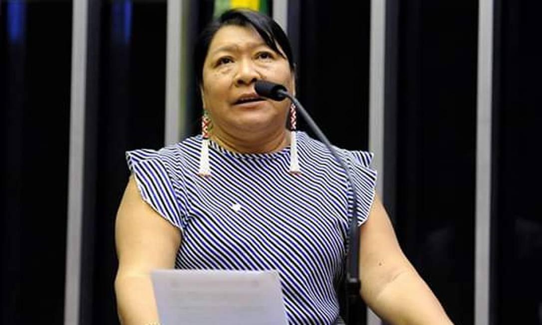 Joênia Wapichana é a primeira indígena eleita para o Congresso Nacional Foto: Luis Macedo/ Câmara dos Deputados