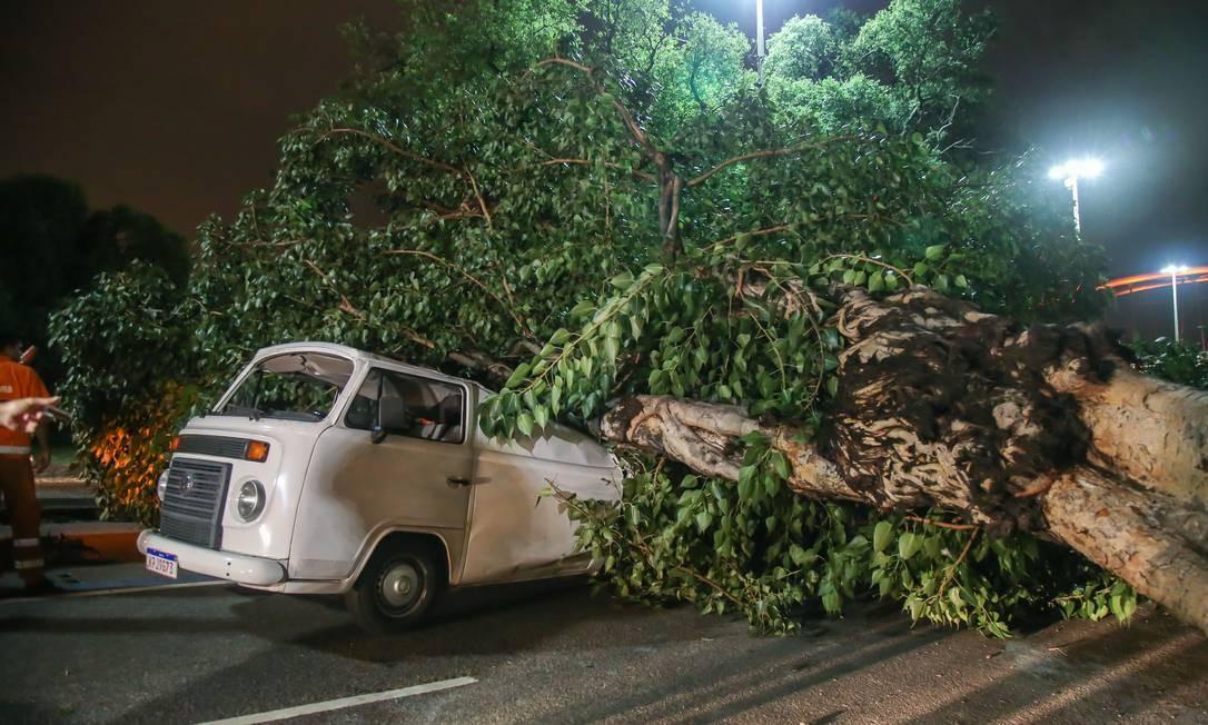 Ventania derrubou uma árvore em cima de uma kombi que passava pela Avenida Presidente Vargas Foto: Marcelo Regua / Agência O Globo