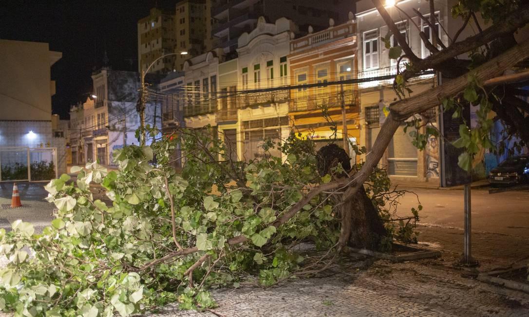 Rua São Clemente, em frente ao número 47, registrou queda de árvore após ventania deste domingo Foto: Bruno Kaiuca / Agência O Globo