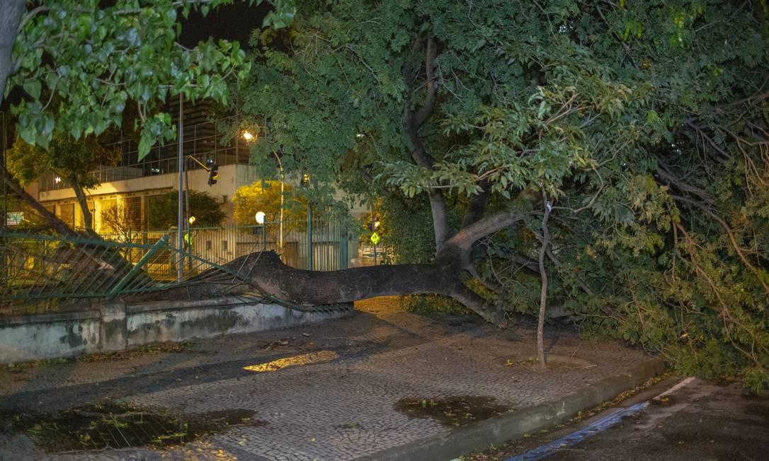 Grades na Rua Estácio de Sá, bem próximo ao metrô, foram derrubadas com a queda de uma árvore Foto: Bruno Kaiuca / Agência O Globo