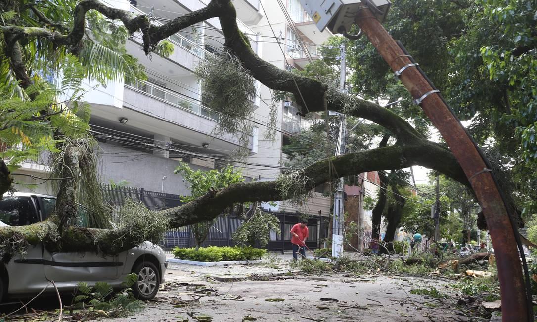 Árvore cai sobre carro na Rua Araxá, no Grajaú Foto: Pedro Teixeira / Agência O Globo