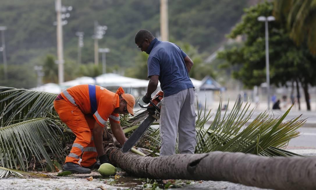 Coqueiro que caiu no vendaval é cortado para ser removido da orla do Leme Foto: Pablo Jacob / Agência O Globo