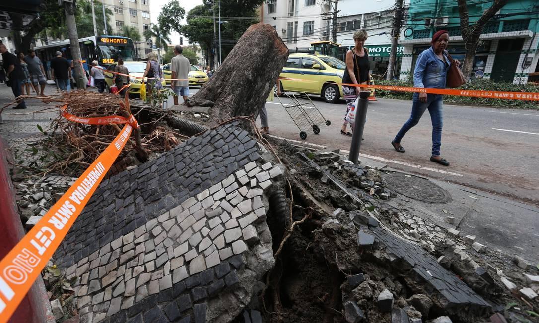 Após queda de árvore, raiz fica exposta e calçada acaba destruída na Rua Haddock Lobo, em frente ao Largo da Segunda-Feira Foto: Pedro Teixeira / Agência O Globo