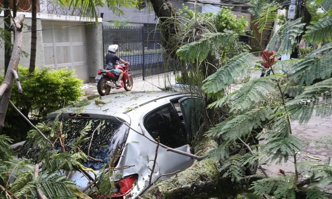 Devido aos fortes ventos, árvore caiu sobre carro na rua Araxá, no Grajaú Foto: / Pedro Teixeira - Agência O Globo