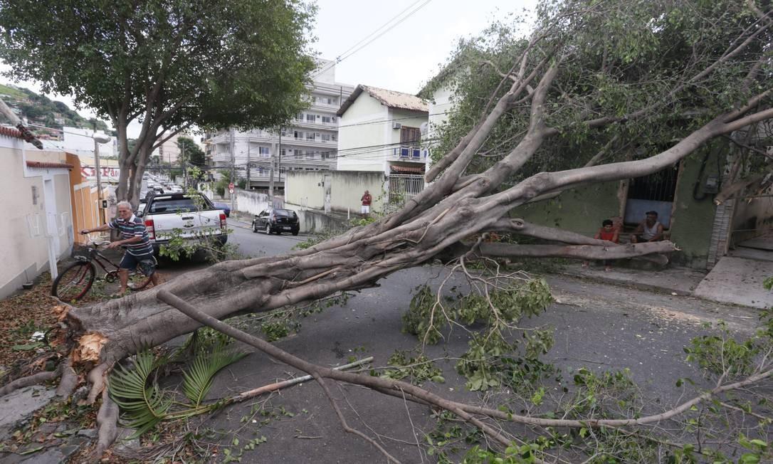Em Nova Iguaçu, na Baixada Fluminense, a ventania fez com que uma árvore caisse fechando a Rua João Martins, no Bairro Caonze Foto: Cléber Júnior / Agência O Globo