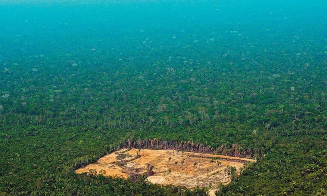 Para especialistas, projeto de lei que revoga obrigatoriedade de reservas legais em propriedades rurais coloca em risco equilíbrio e a proteção da floresta Foto: CARL DE SOUZA/AFP/22-9-2017