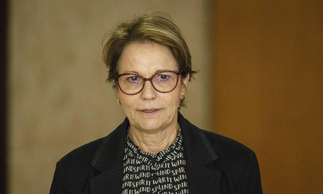 Tereza Cristina, ministra da Agricultura do governo Jair Bolsonaro Foto: Daniel Marenco / Agência O Globo