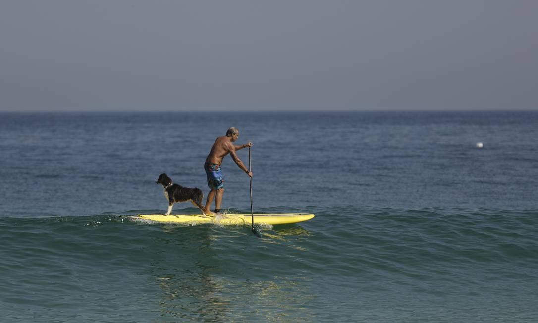 Bom para cachorro: o mar tranquilo é perfeito para o stand up paddle Foto: Gabriel de Paiva / Agência O Globo