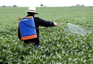 Produtor de soja utiliza agrotóxico em plantação Foto: Michel Filho/Agência O Globo/26-01-2017
