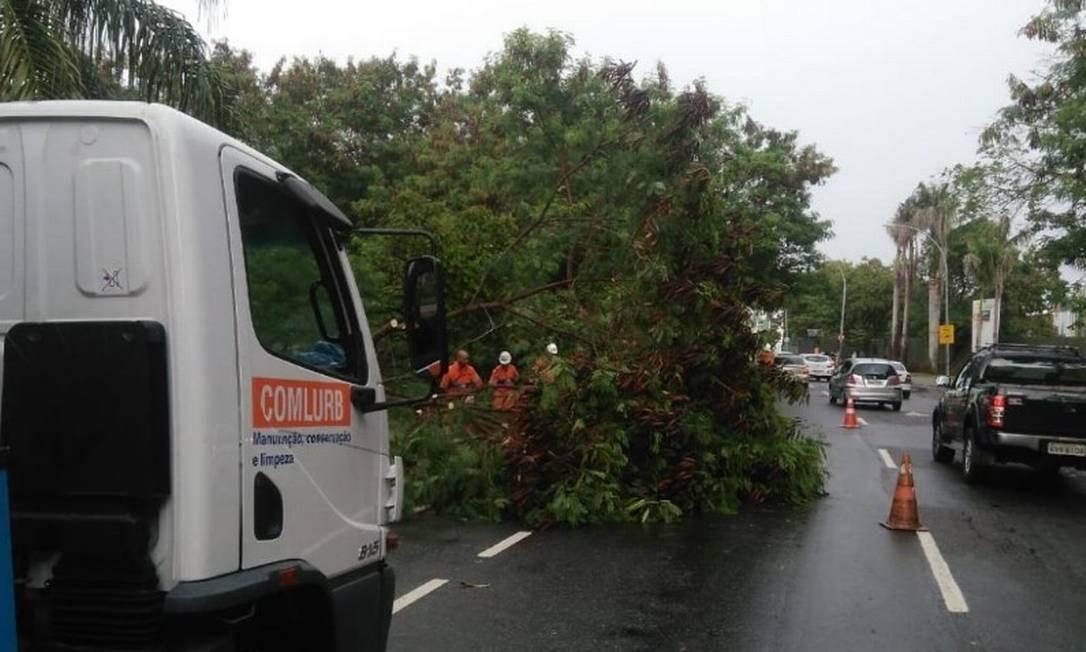 Equipes da Comlurb atuam na Avenida José Silva de Azevedo Neto, atrás do Via Parque, na Barra, após a queda de uma árvore Foto: Centro de Operações