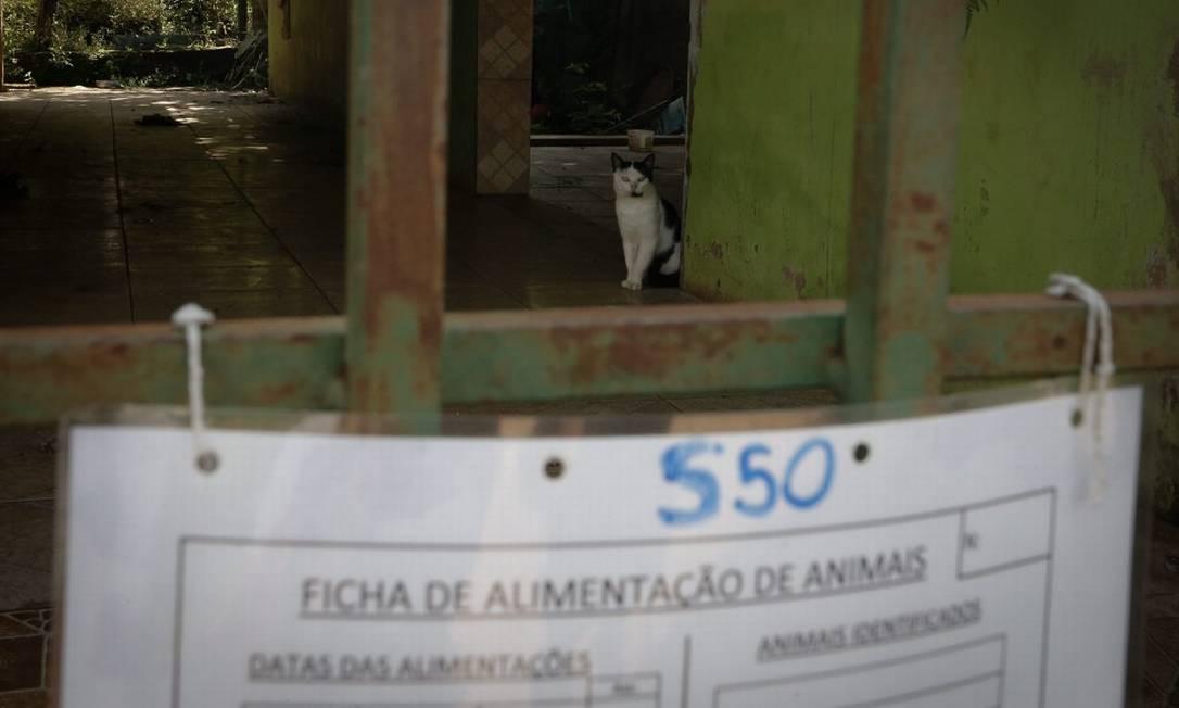 Ficha de alimentação de animais pendurada na frente de uma casa abandonada em Socorro Foto: Pablo Jacob / Agência O Globo