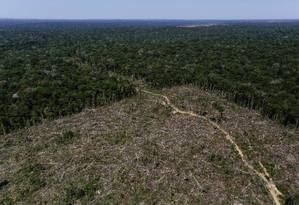 Desmatamento no Amazonas: estado foi o terceiro com maior índice de devastação da Amazônia entre agosto de 2018 e abril de 2019 Foto: BRUNO KELLY / Agência O Globo/27-7-2017
