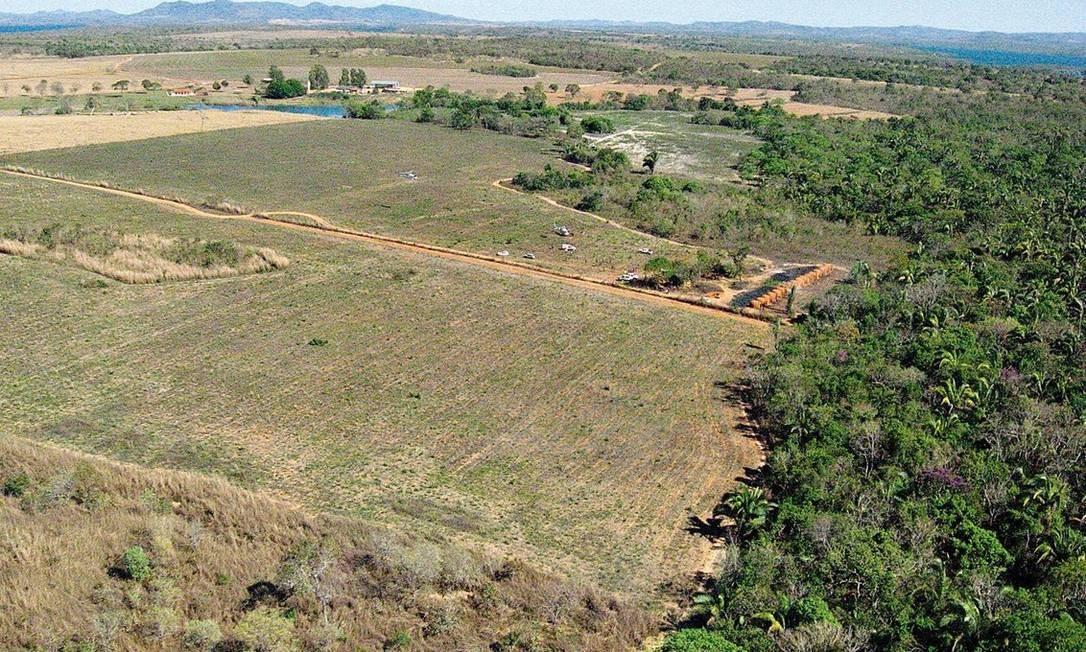 O Cerrado é um biomas mais frágeis do país e palco do avanço da agropecuária e da indústria da soja Foto: Catarina Alencastro/11-9-2009