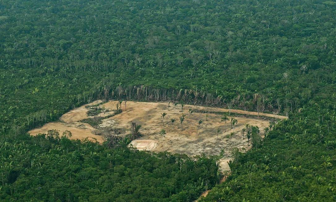 Desmatamento na Amazônia Ocidental: redução e exclusão de áreas protegidas preocupam ambientalistas Foto: CARL DE SOUZA / AFP/22-9-2017