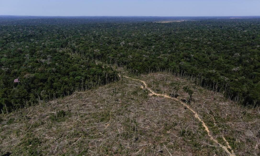 Vista aérea de áreas desmatadas na região sul do Amazonas Foto: BRUNO KELLY / Agência O Globo