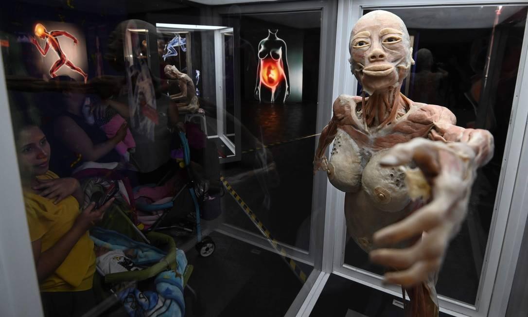 """Os visitantes veem um corpo humano em """"Bodies: The Exhibition"""" em Bogotá em 5 de junho de 2019. A exposição apresenta corpos humanos preservados através de um processo de preservação de polímeros que impede o processo de decomposição natural. Foto: JUAN BARRETO / AFP"""