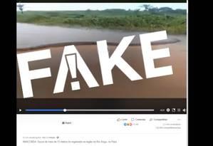 É #FAKE que sucuri de 15 metros tenha sido encontrada no rio Xingu Foto: Reprodução