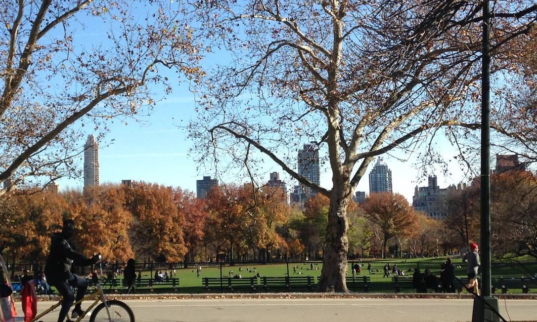 Central Park, em Nova York Foto: Carolina Mazzi / Carolina Mazzi