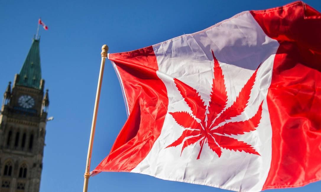 No Canadá, o consumo medicinal da maconha foi autorizado em 2001. A partir de 17/10/2018, qualquer pessoa maior de 18 anos pode comprar até 30 gramas de maconha por vez, quantidade máxima que se pode portar na rua. Foto: CHRIS ROUSSAKIS / AFP