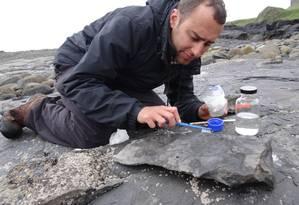 Steve Brusatte analisa rochas na Ilha de Skye, na Escócia: pesquisador americano trabalhou em mais de dez países, entre eles o Brasil Foto: Divulgação